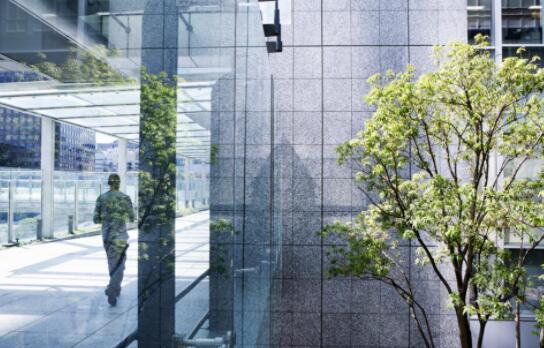 企业社会责任和ESG计划如何随着工作场所的适应而扩大影响力