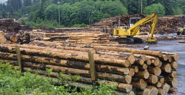 等待木材价格缓解 一些建筑商推迟项目