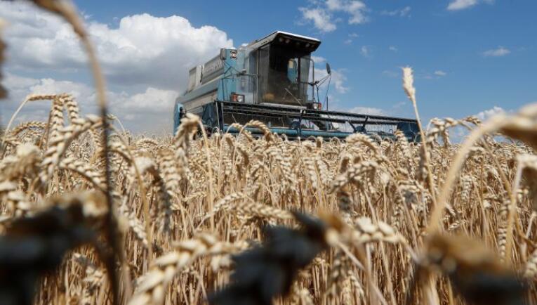 乌克兰准备实现历史性的土地市场突破